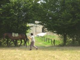 Possibilité de séjour avec votre cheval